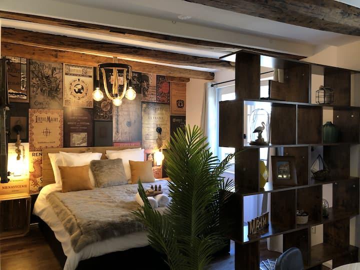 Appartement chic et vintage HYPER CENTRE COLMAR.