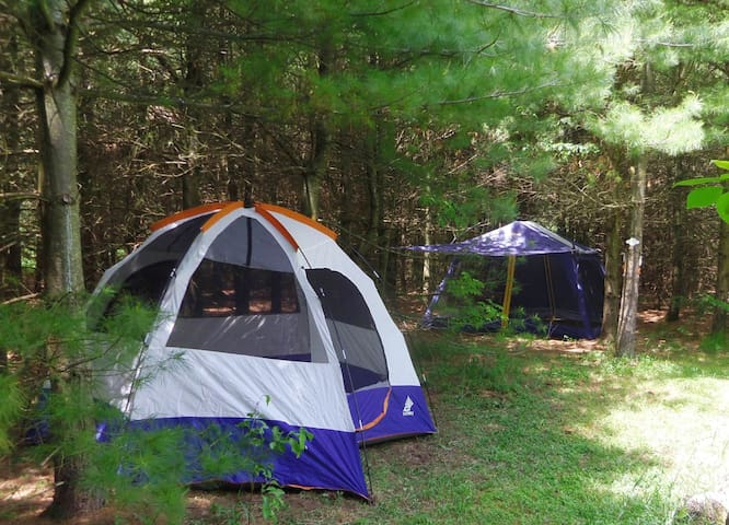 Private Camping on 50 acre Off-Grid Retreat - Chatsworth - Tent