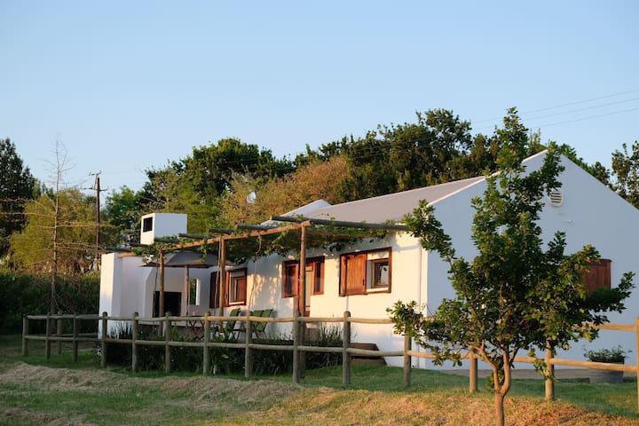 Olifantskop Cottage - Cosy Farm Stay
