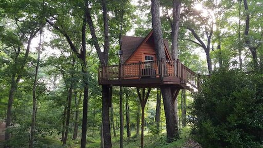 Derby Treehouse Height