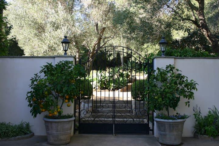 Montecito Nest