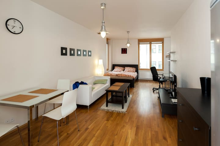 Modern and comfy studio flat for you in Prague
