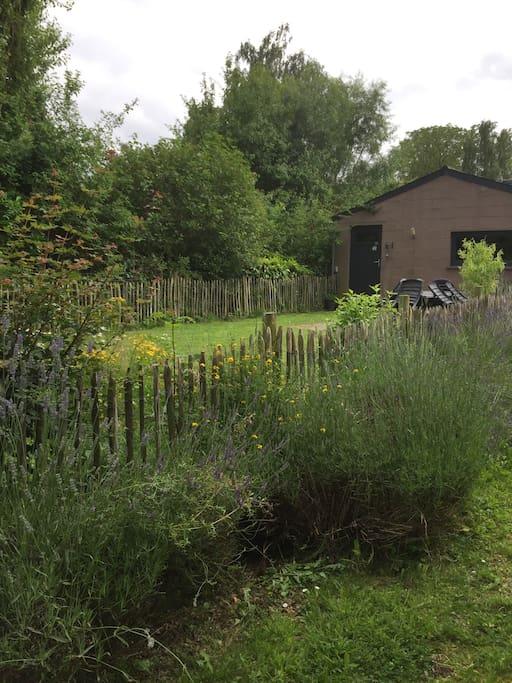 Vue de l'entrée et du jardin + terrasse du gîte