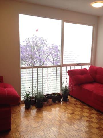 Habitación soleada grande, cama de matrimonio UNAM - Ciudad de México - Huoneisto