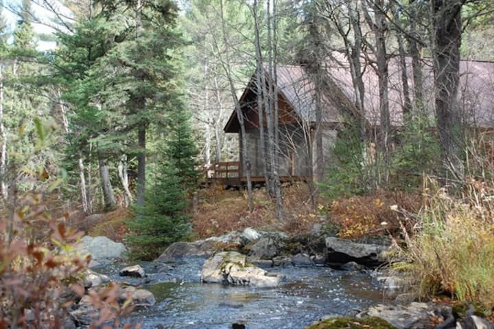 TIOGA FALLS CABIN: Very secluded, Unplug & relax, Waterfalls, 80 acres, pets-yes