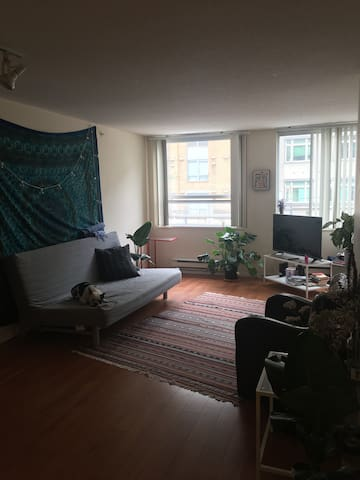 Downtown Vancouver  Cozy & Central 1 bedroom