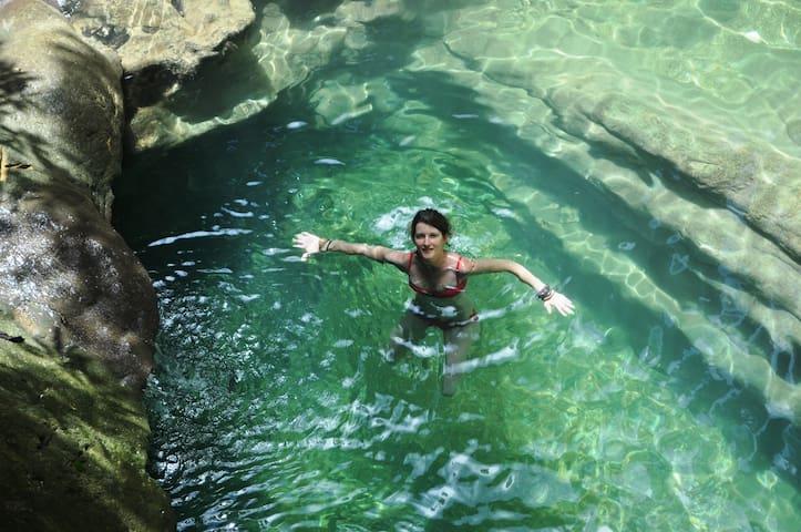 Leatherback Lodge Budget Travellers - Matura - Aamiaismajoitus