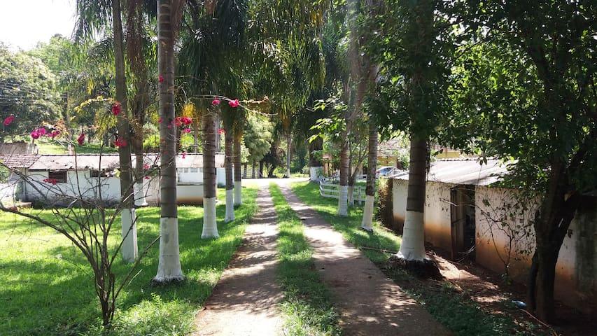 Sítio Vale do Sol - Muita Natureza e Ar Puro - Cambuí - Cabaña