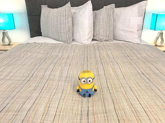 Minion? Convention Center/Subway 1 bed 287-1A