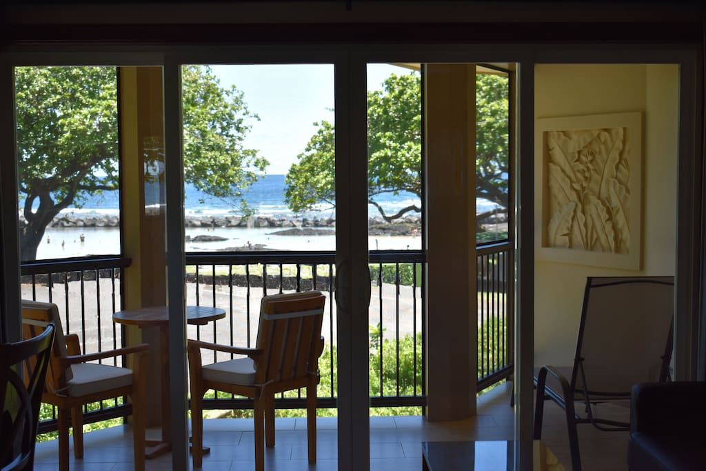 See Dolphins and Whales from your private lanai.