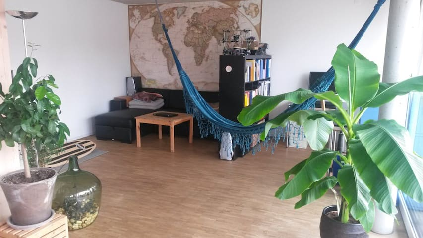 Lovely and modern apartment in car-free area - Bern - Apartemen