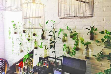 Estancia Mango (Aire Acondicionado, A/C in room)