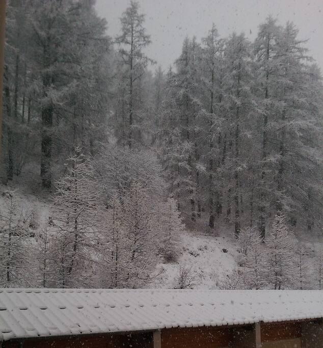 Vue du balcon en hiver