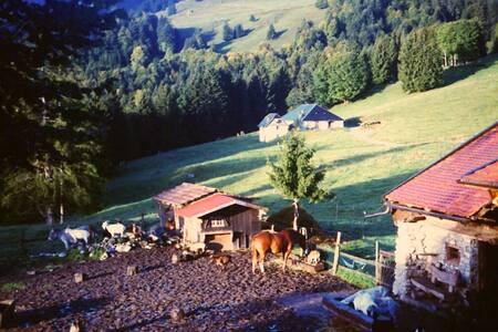 La Suisse typique, Heidiland. Chalet d'exception. - Haut-Intyamon - Chalet - 1