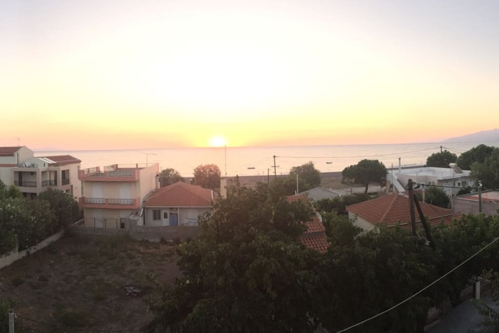 View from terrace (sunrise)