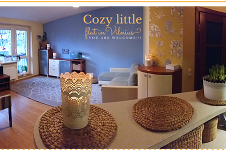 Cozy, studio type little flat. - Vilnius - Wohnung