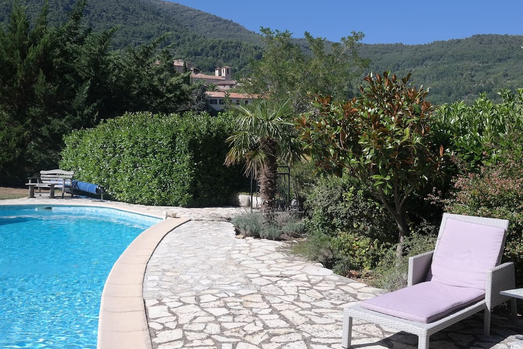 Pool with a view of Seillans in the background
