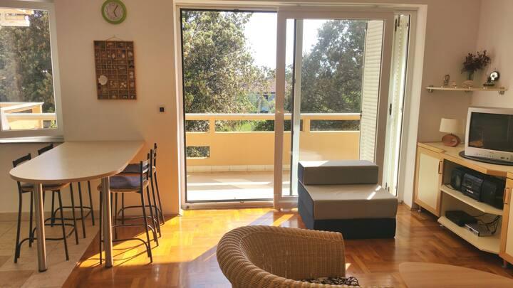 Predrag - One Bedroom Apartment with Balcony