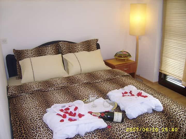 Villa Boris Room 2