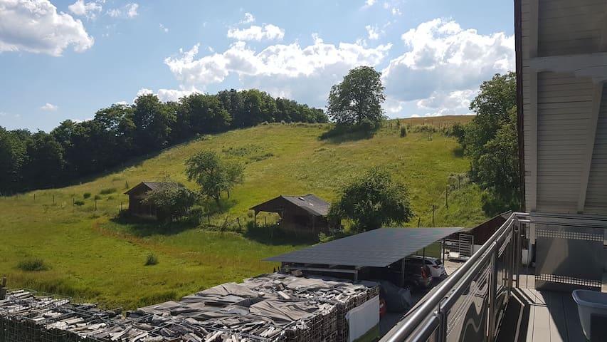 Ferienwohnung/Monteurzimmer auf dem Bauernhof(Odw)
