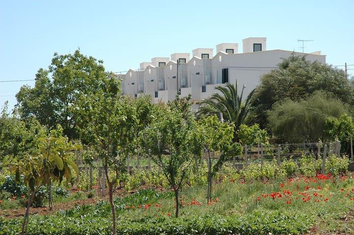 Casa Vacanze nei pressi di Otranto - Uggiano La Chiesa - Pis