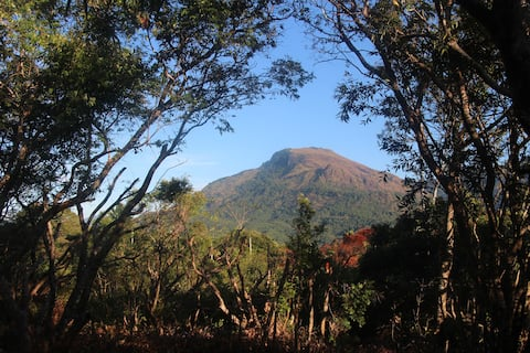 Leopard's Lodge, Mahatenne hilltop retreat