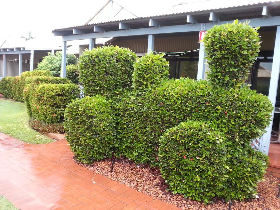 Manicured lush gardens