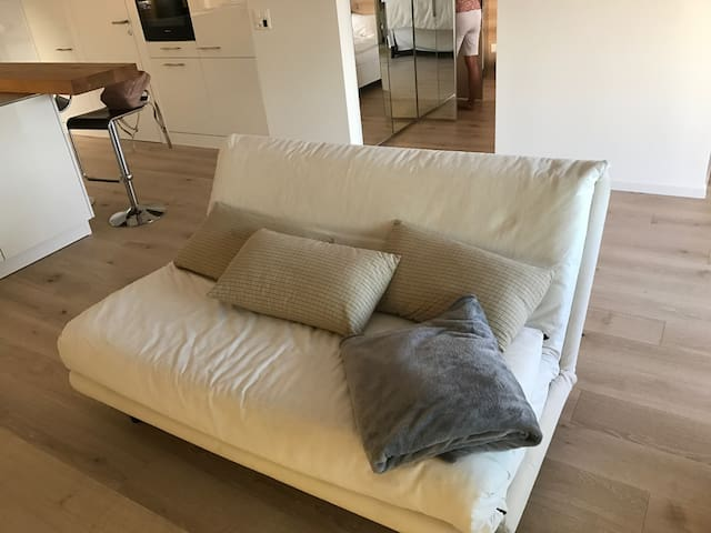 Sleeping Couch
