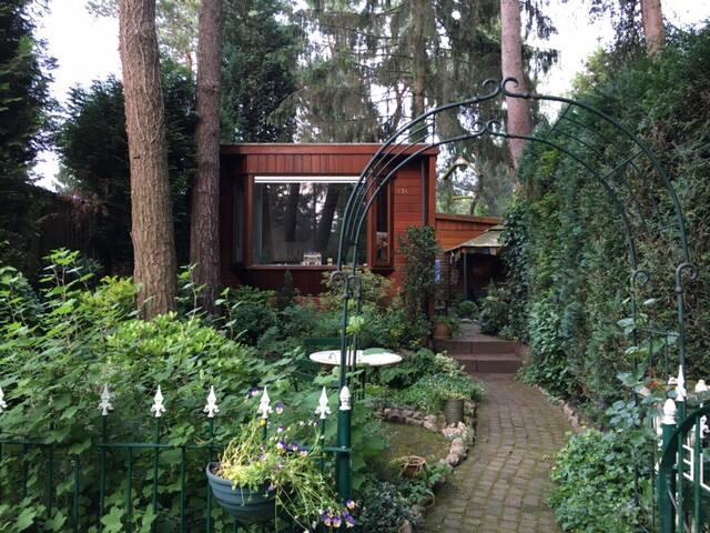 Droomhuisje onder de dennen aan het Speulderbos - Garderen