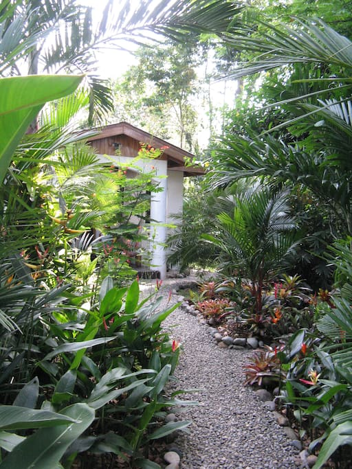 April 2016 - tropical garden pathway to front entryway