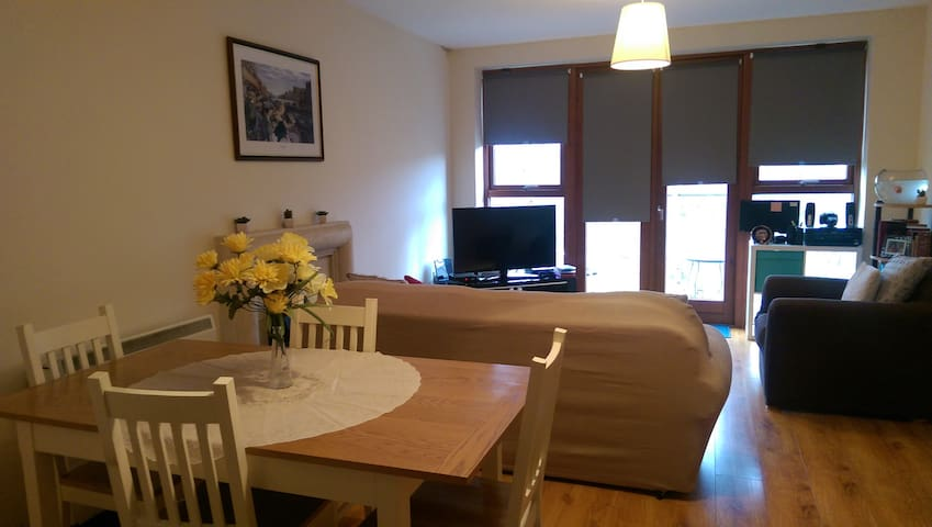 Deluxe & cosy DOUBLE bedroom by TRAIN STATION - Dublin - Apartmen