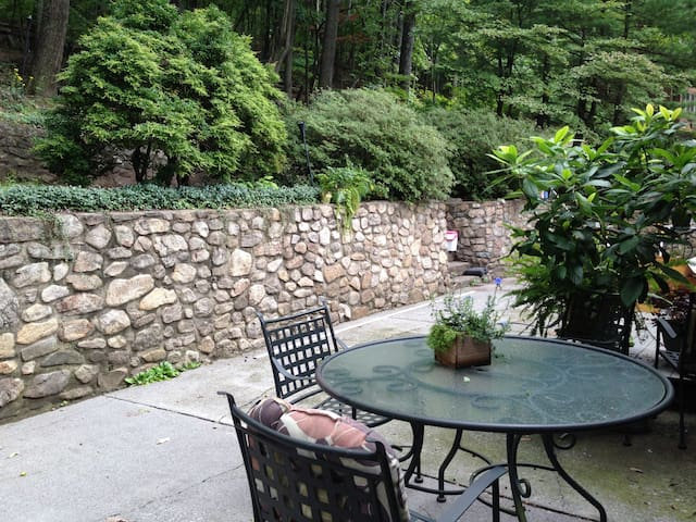 Spacious suite, Friendlyatmosphere - Roanoke - House