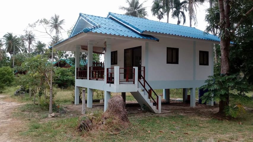 Small House in coconut field