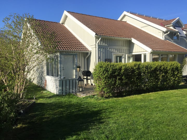 Terrace house with a housecat, Gothenburg