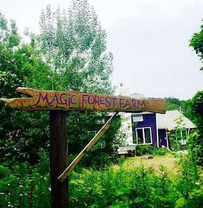 Magic Forest Farm - Beautiful Pitch Site No. 7