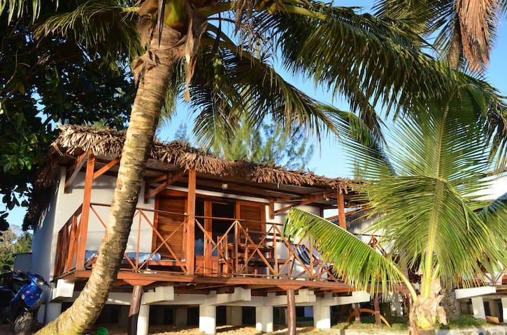 Tongasoabeach   Villa palmier