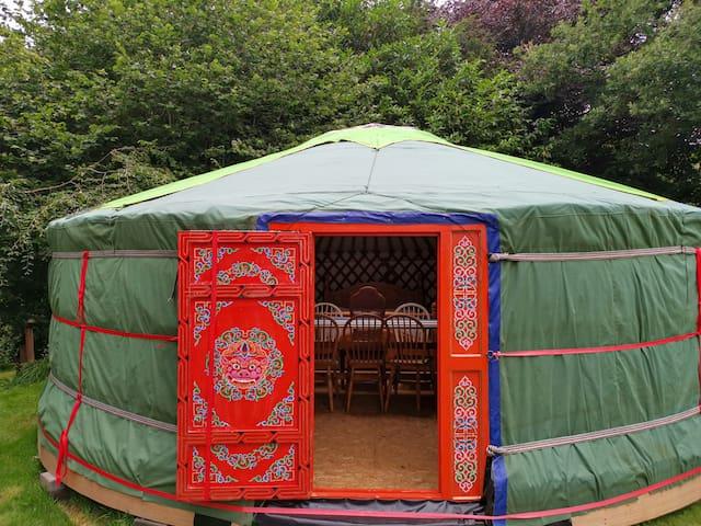 Alpaca yurt retreat in grounds of Manor House
