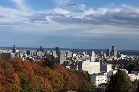 awesome view in Sendai city