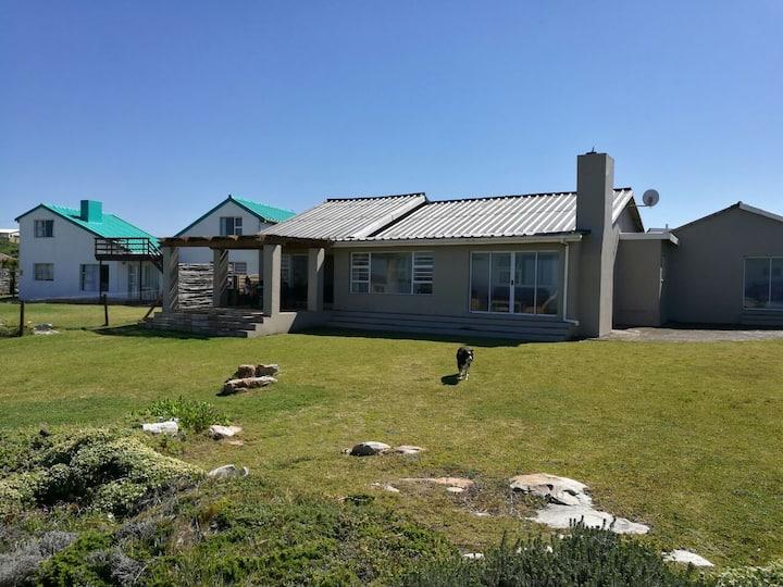 Cape Saint Francis House SEAL POINT BEACH HOUSE