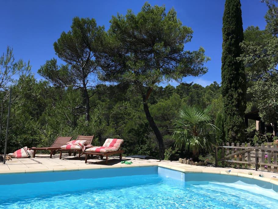 Maison en provence piscine clim maisons louer for Piscine en provence
