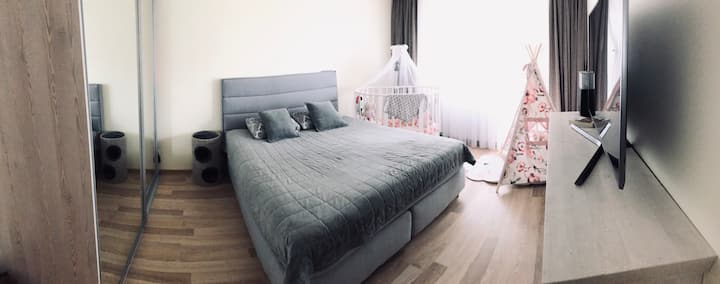 Large bed and pullout sofa.