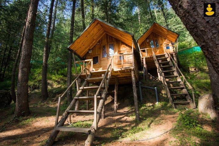 Treehouse   Adventure   Ojuven by LivingStone