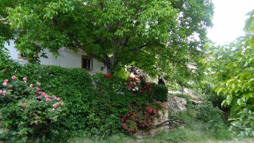 Casa rural en nerpio - Nerpio