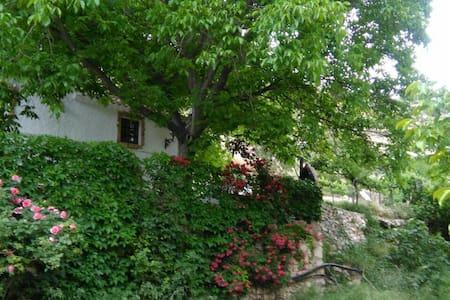 Casa rural en nerpio - Nerpio - Casa