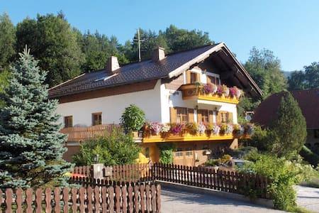 Ferienwohnung  Haus König  im  Wanderparadies NÖ