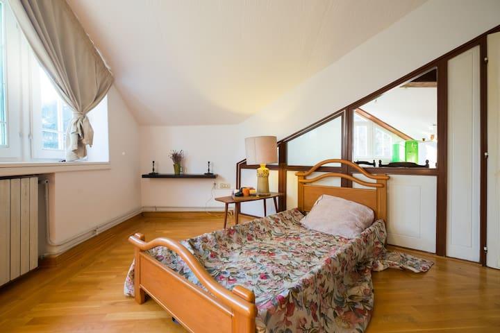Ana's B&B - apartment Wolf - Beograd - Casa