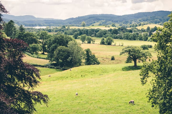 Superb room with Lake District view (Braithwaite) - Outgate - Bed & Breakfast