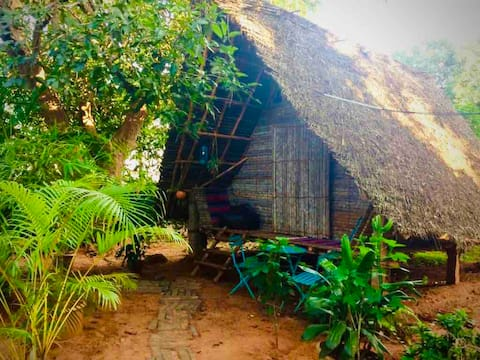 Lemon  Tree Hut -  Near Auroville