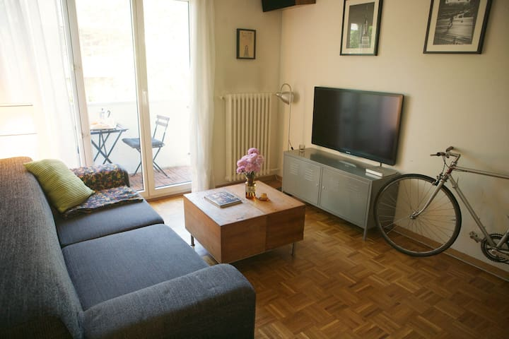 Cosy place in the heart of Geneva - Женева - Квартира