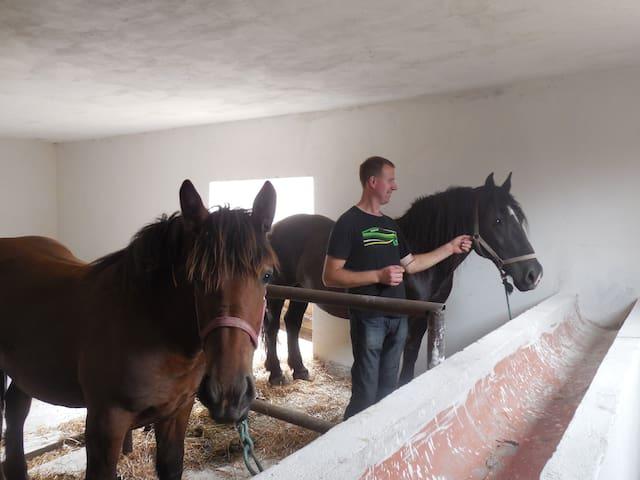 Animal Farm U Zbyszka